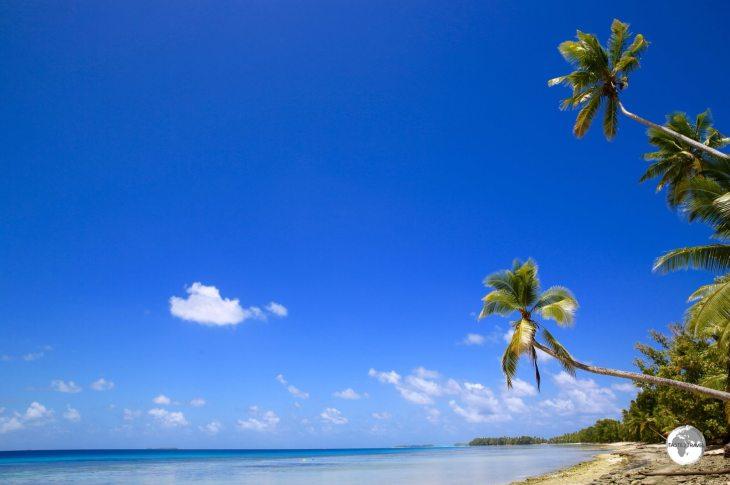 Tuvalu Travel Guide: Palm trees on Funafuti Lagoon.