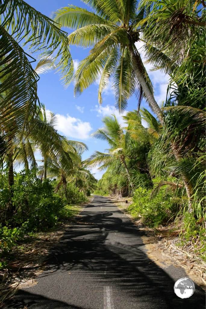 There is one narrow road on Funafuti which meanders along the length of the lagoon side of the island.