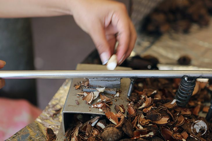 Some traders use small guillotines to remove the shell, which is a little faster than a knife.