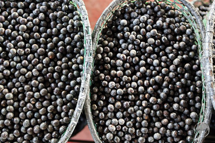 After timber exports, Açaí berries are the 2nd most valuable export item for the Amazon region.