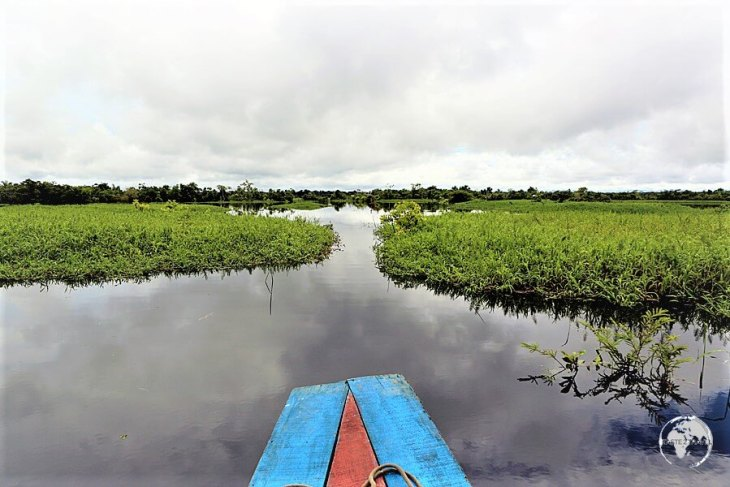 Exploring the Amazon around Iquitos.