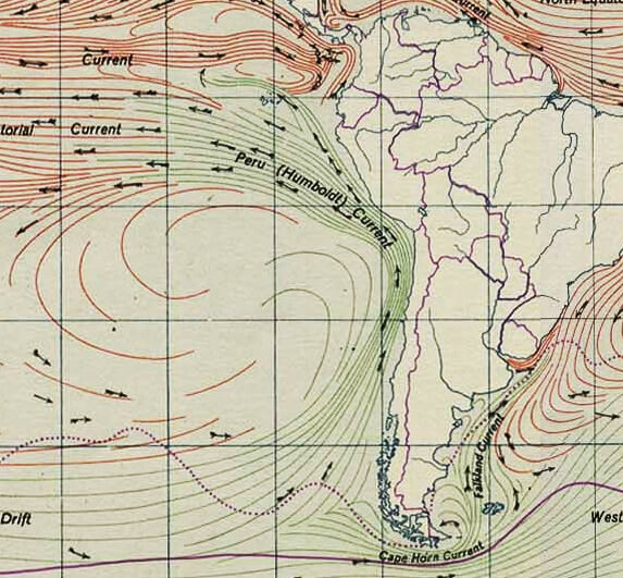 A map showing the flow of the Humboldt current. Source: Wikipedia