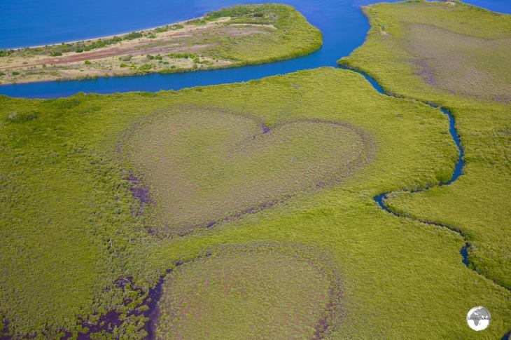 The 'Heart of Voh' is a naturally occurring heart-shaped bog inside a mangrove swamp.