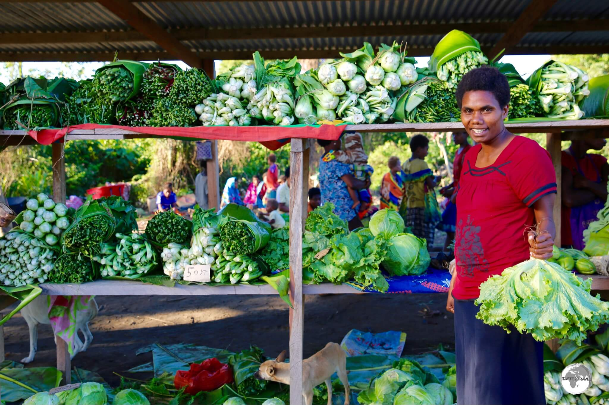 A roadside market on Tanna.
