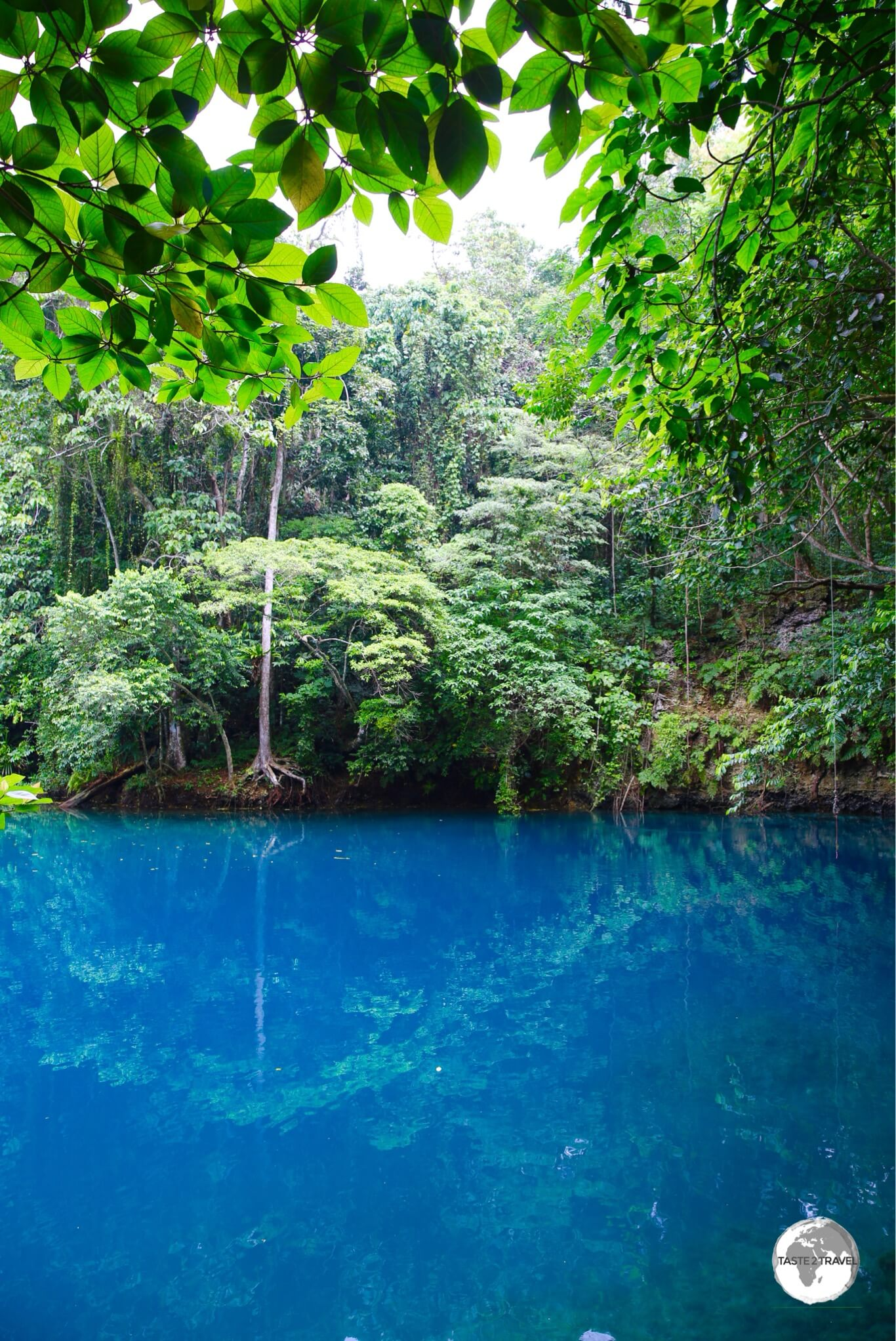 A perfect swimming spot – Riri blue hole, one of several such natural pools on Santo.