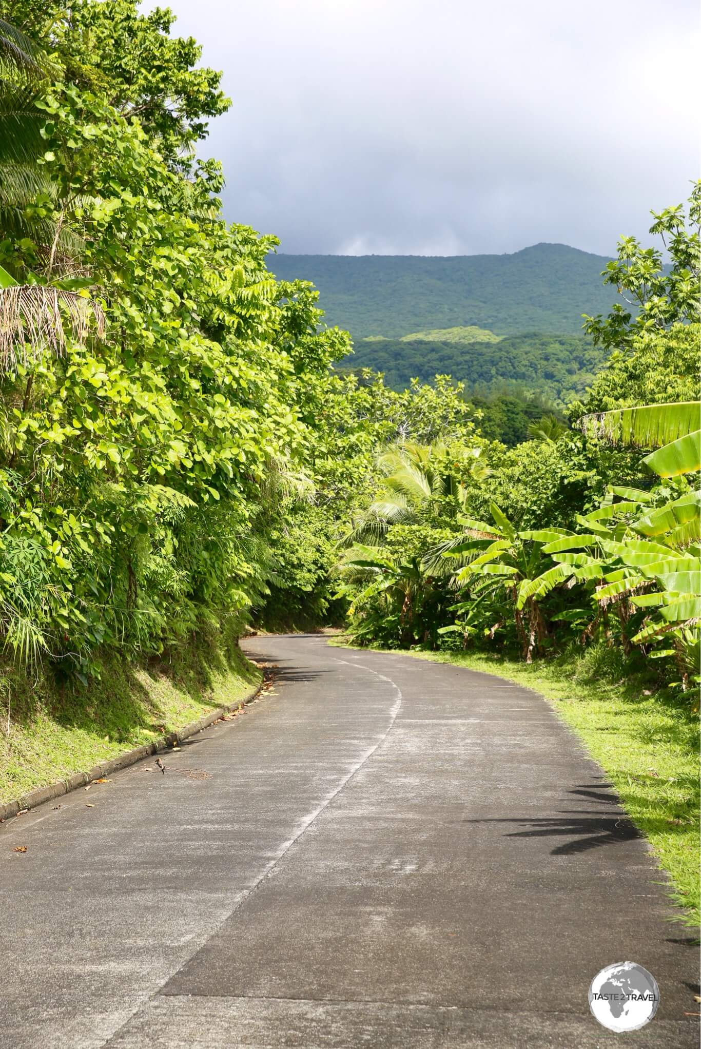 The one, concrete road on Ta'u runs along the north shore of the island, connecting the half dozen villages on the island.