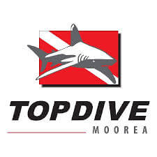 'Top Dive' did provide a top diving experience.