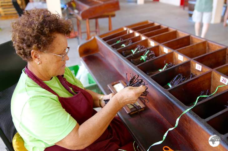 A worker at the <i>Coopérative Pro Vanille</i>, in Bras Panon, sorting vanilla pods into different lengths.