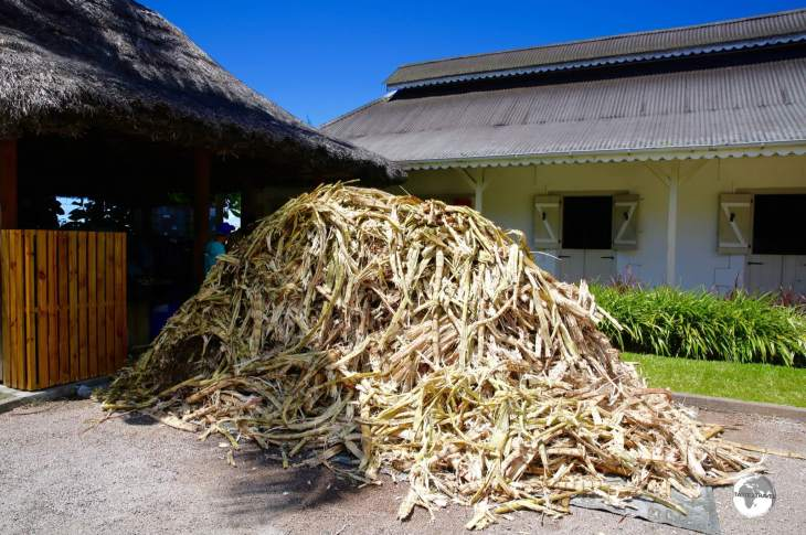 Once squeezed of its juice, the leftover cane is returned to the farmers to be used as fertiliser.