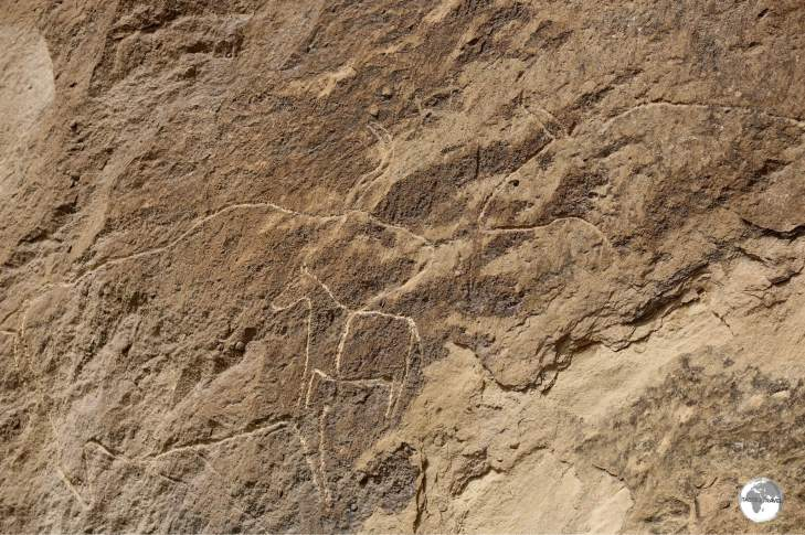 The petroglyphs of Gobustan feature diagrams representing flora and fauna.