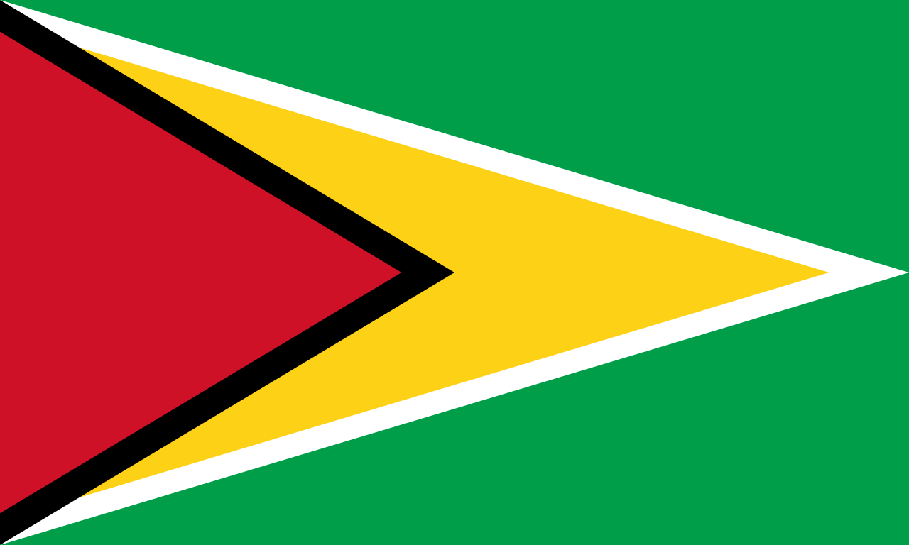 The flag of Guyana.