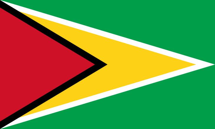 The flag of Guyana.