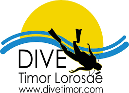 Dive Timor Logo