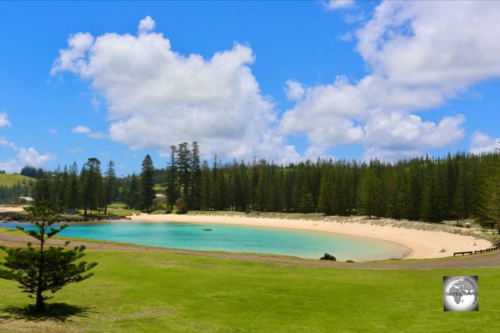 Beautiful Emily Bay is surrounded by a forest of Norfolk Island pines.