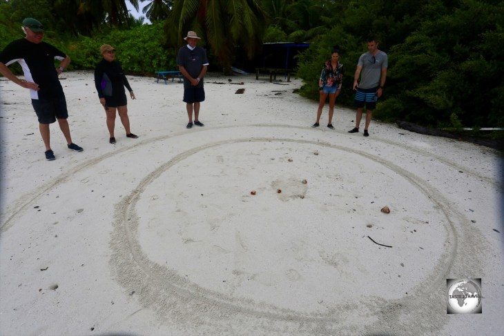 After breakfast on South Island, it was time for a hermit crab race.