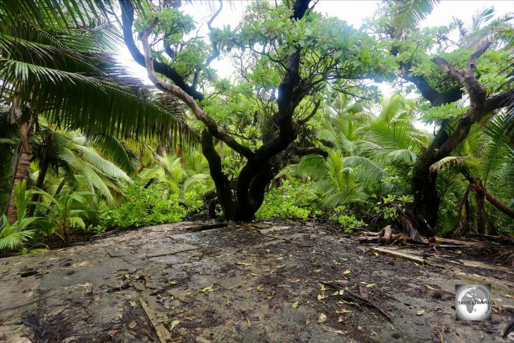 At 9-metres (30 ft) above sea level, this concrete platform on South Island, marks the highest point on the Cocos (Keeling) Islands.