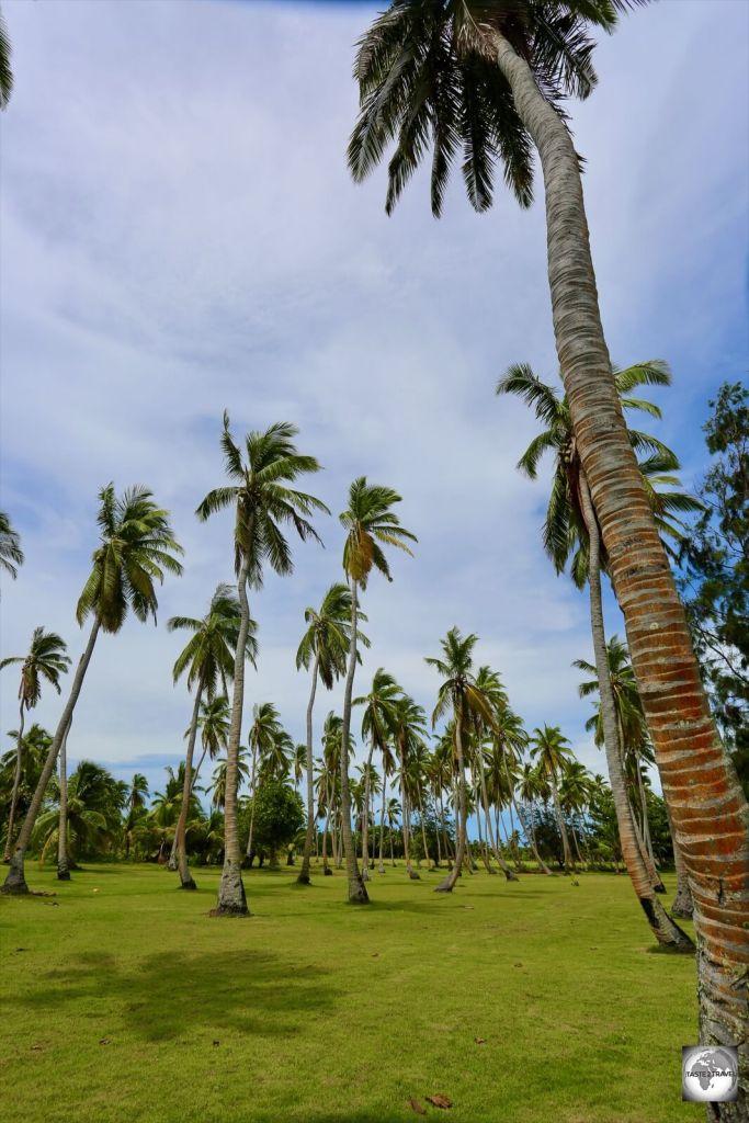 A former coconut plantation on Home Island.