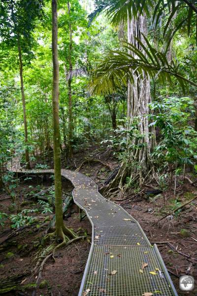 The boardwalk to Hughs Dale waterfall on Christmas Island.