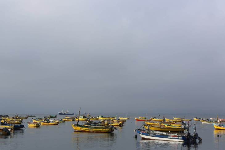 Picturesque fishing boats in the harbour at La Serena, northern Chile.
