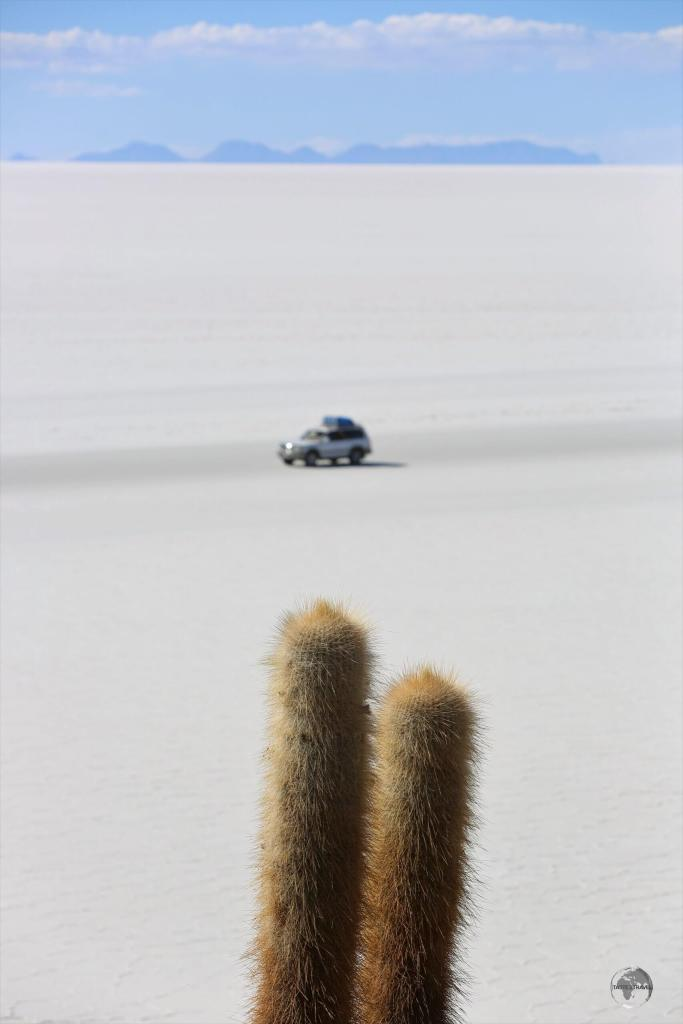 A 4WD crossing the Salar de Uyuni, passes by Incahuasi island. With no roads and no navigational aids, the only way to explore this vast, empty, salt flat is with a knowledgeable driver.