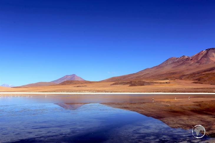 Located at 4,140 metres (13,582 ft), the saline waters of Canapa lagoon attract large numbers of Andean flamingos, making it a highlight of the Salar de Uyuni.