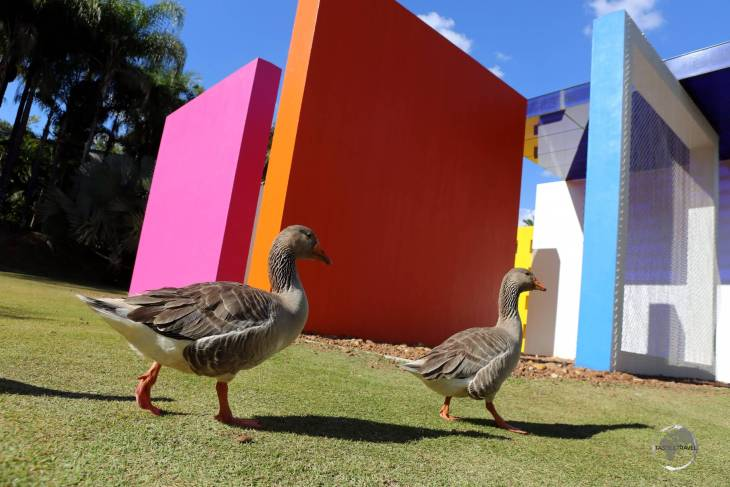 A highlight of Minas Gerais state, Inhotim Botanical Gardens is the largest open-air contemporary art centre in Latin America.
