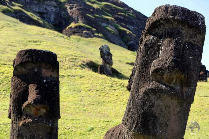 Abandoned moai lie half-buried on the slopes of Rano Raraku volcano, the source of 95% of all statues produced on Easter Island.