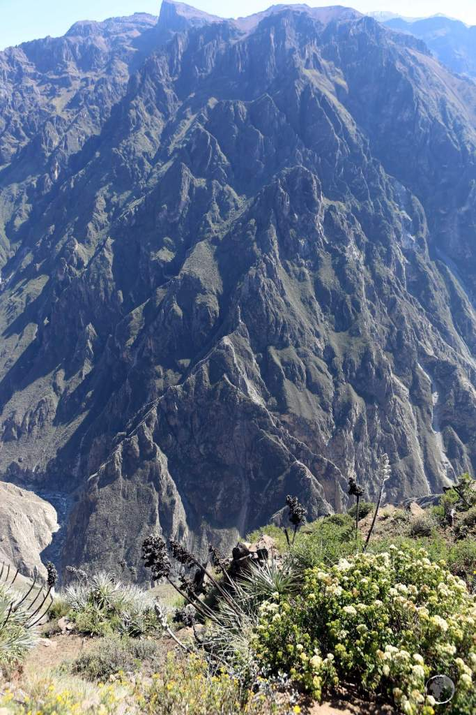 Located 160 km (99 mi) northwest of Arequipa, the Colca river (bottom-left) flows through the Colca canyon, which, at 2,000 metres in depth, is one of the deepest canyons in the world.