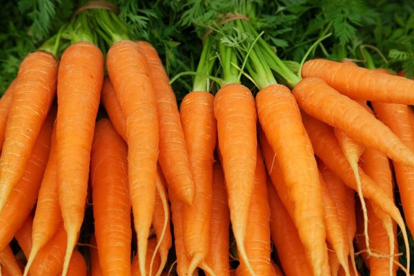 Can You Really Get Orange Skin From Carrots Taste of Home