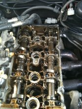 MMM oily bits