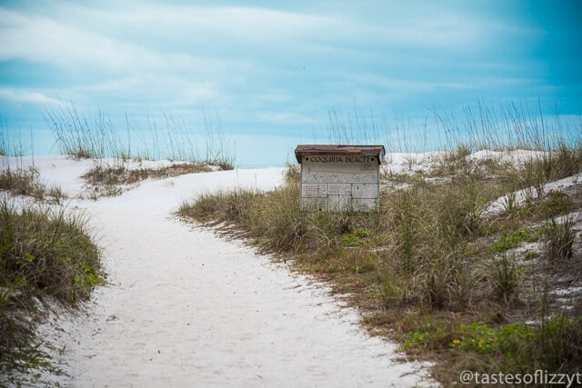 AMI is known for its beautiful white sand beaches! Find out the best beaches on Anna Maria Island for your family vacation.