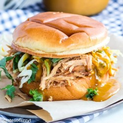 pulled pork sandwich with mustard sauce