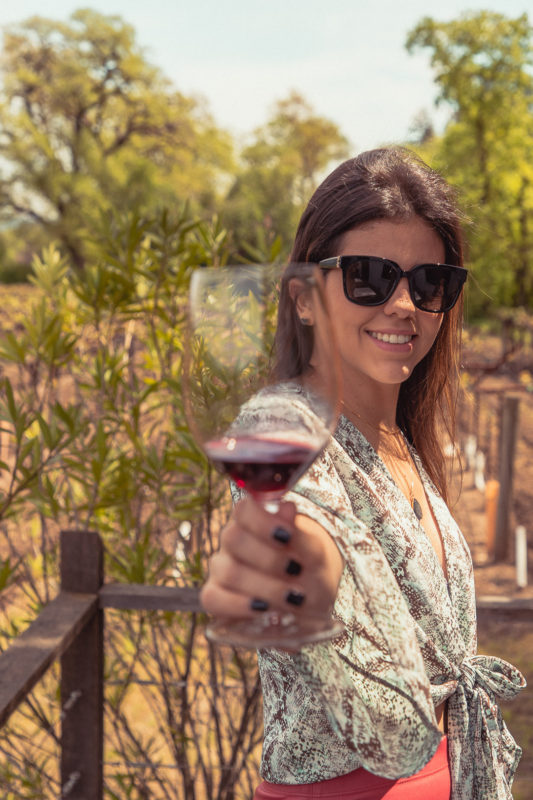 Q&A WITH WINE LOVER ISABEL AND THE CURATOR OF NAPA VALLEY TIP 3