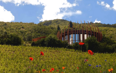 Chile Wine Tour Clos Apalta