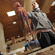 san-benedetto_market-experience_octopus_ND3_4829