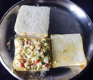 IMG_4788-300x258 Egg Salad Sandwich