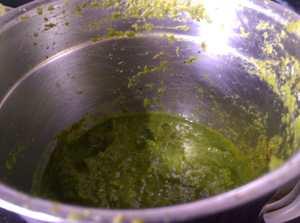 BAUF3427-300x223 Thai Green Curry Paste