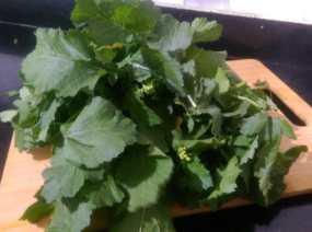 CMWQ7172-300x223 Mustard Leaf Gravy with Indian Corn Flat Bread/Makki Ki Roti and Sarson ka Saag