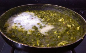 DBFP7697-300x185 Cottage Cheese and Green Peas in Spinach Gravy/Matar Paneer Hara Masala