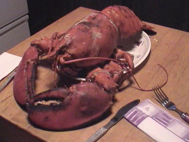 Lobster Dinner San Francisco