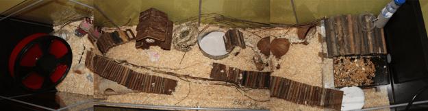 pelkowy-domek