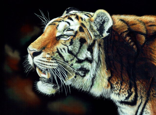 tiger painting with black background