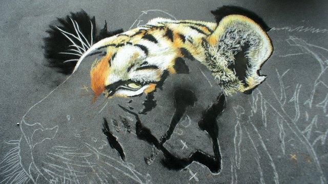 tiger's head in sketch