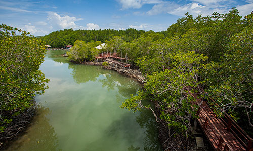 Beyond Phuket's beaches - Welcome to the jungle