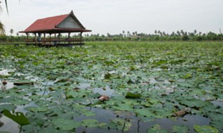 Khlong-Mahasawat_25-500x300