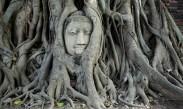 ayutthaya-12-wat-maha-that-1-500x300