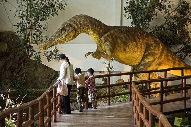 Dinosaur Museum, Phu Wiang National Park