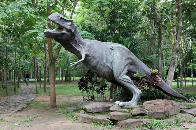 Phu Faek Forest Park, Kalasin