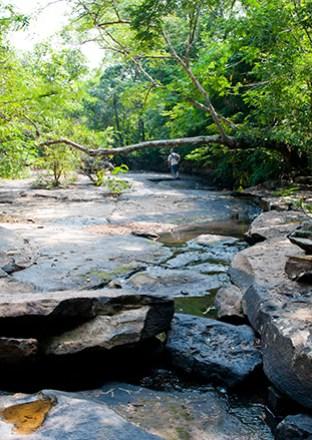 Thai silk at Kalasin Phu Faek Forest Park, Kalasin