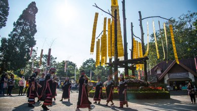 'Colours of Doi Tung' Festival returns in its 7th year this December & January